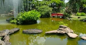 Conheça o Jardim Japonês